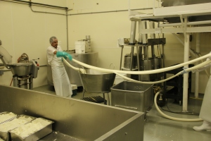 Hand stretching at Ochoa Cheese, Albany, Oregon